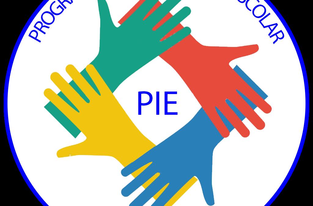 Intervención a la comunidad, Programa de integración escolar, Colegio Las Camelias, Retiro.